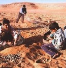 Arrestation de 19 jeunes Marocains: Les chefs du Polisario dans l'embarras