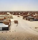 La demande marocaine d'une enquête internationale met du baume au cœur de la population des camps de Tindouf